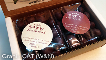 Arabica coffee beans, variety Caturra (CAT), W & N roasted and covered with 55% chocolate - 160g